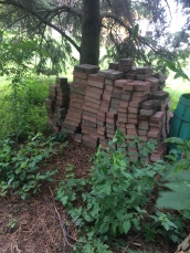 Free pavers from an old patio.